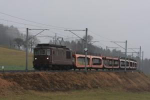 Les brunes… dans Trains 2011-01-11-011copie-300x200