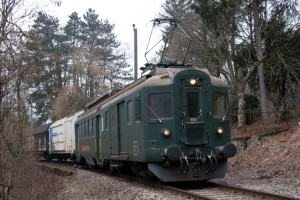Des vertes et des bien mûres dans Trains 2011-02-16-032copie-300x200